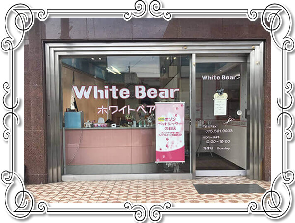 ホワイトベア 初めてご来店の方へ